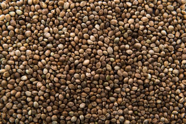 Hemp-Seed-Oil-Benefits